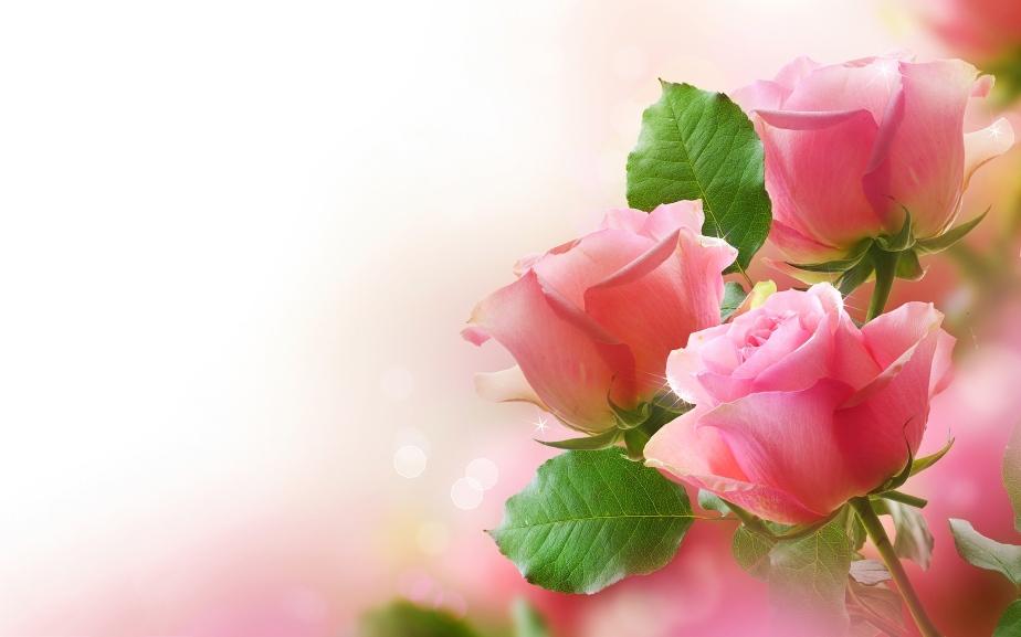"""""""Raindrops on Roses, & Whiskers on Kittens…"""""""